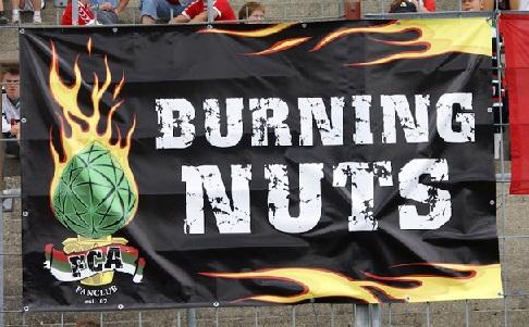 Burning Nuts