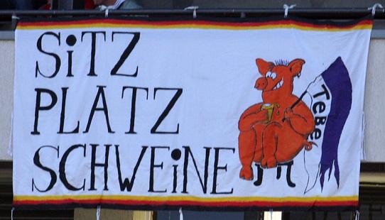 Sitzplatz Schweine